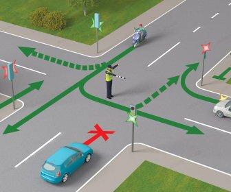 Тест: Знаете ли вы странные мировые правила дорожного движения