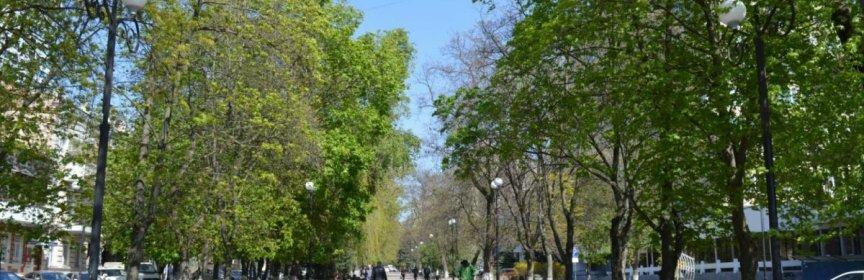 В Ростове на Дону начнётся послабление карантинных мер