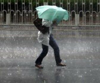 23 октября в Волгоград и область придут дожди, грозы и сильный ветер